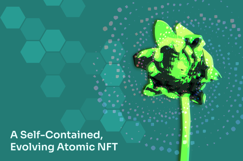 Koii's Vision of the Future is Blooming – in the Form of a Self-Contained, Evolving Atomic NFT